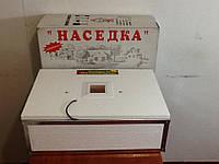 Инкубатор Наседка ИБМ-70 яиц c механическим переворотом и цифровым терморегулятором , фото 1
