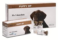 Nobivac Puppy DP - Нобивак паппи DP первая вакцина для щенков