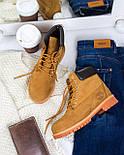 Зимние мужские ботинки Timberland classic 6 inch yellow без меха (Реплика ААА+), фото 5