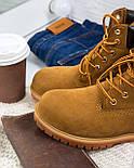 Зимние мужские ботинки Timberland classic 6 inch yellow без меха (Реплика ААА+), фото 3