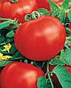 Семена томата Арфа F1 250 семян Nasko