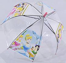Прозрачный зонт в виде купола, фото 3