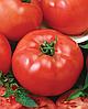 Семена томата Баллада 2500 семян Nasko