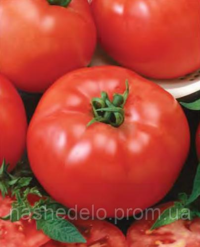 Семена томата Баллада 500 грамм Nasko
