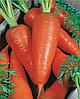 Семена моркови Карнавал 25 грамм Nasko