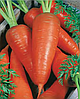 Семена моркови Карнавал 50 грамм Nasko