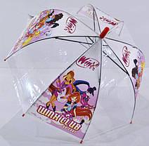 Прозрачный зонт в виде купола, фото 2