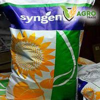 Семена подсолнечника, Syngenta, ОПЕРА ПР