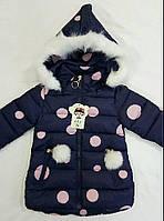 """Детская демисезонная куртка на девочку """"Горошек"""" р. 2-5 лет,  чёрный"""