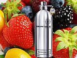 Montale Fruits Of The Musk парфюмированная вода 100 ml. (Монталь Фрутс Оф Зе Муск), фото 3