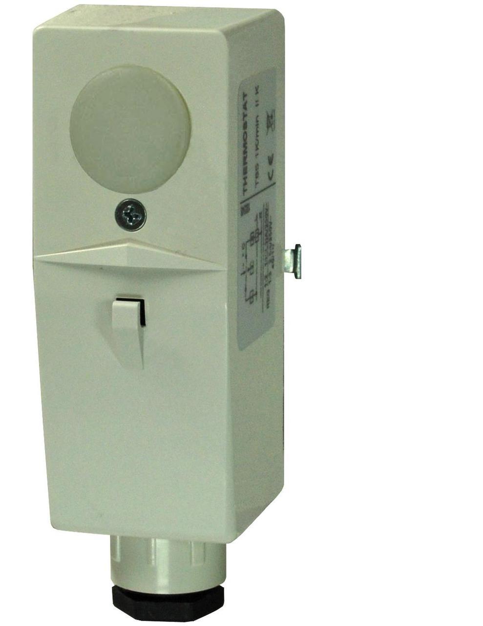 Ограничительный термостат Siemens RAM-TW.2000M