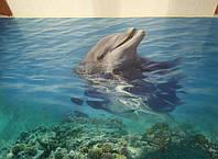 Наливные полы 3D - Морская тема