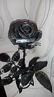 """Кованая """"Черная роза"""""""
