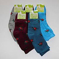 Женские махровые носки Топ-Тап - 11.50 грн./пара (снегири), фото 1