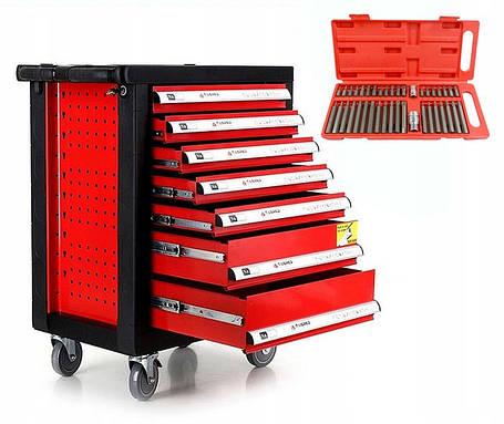 Тележка для инструментов, шкаф для инструментов Tagred 220ел + 40ел, фото 2