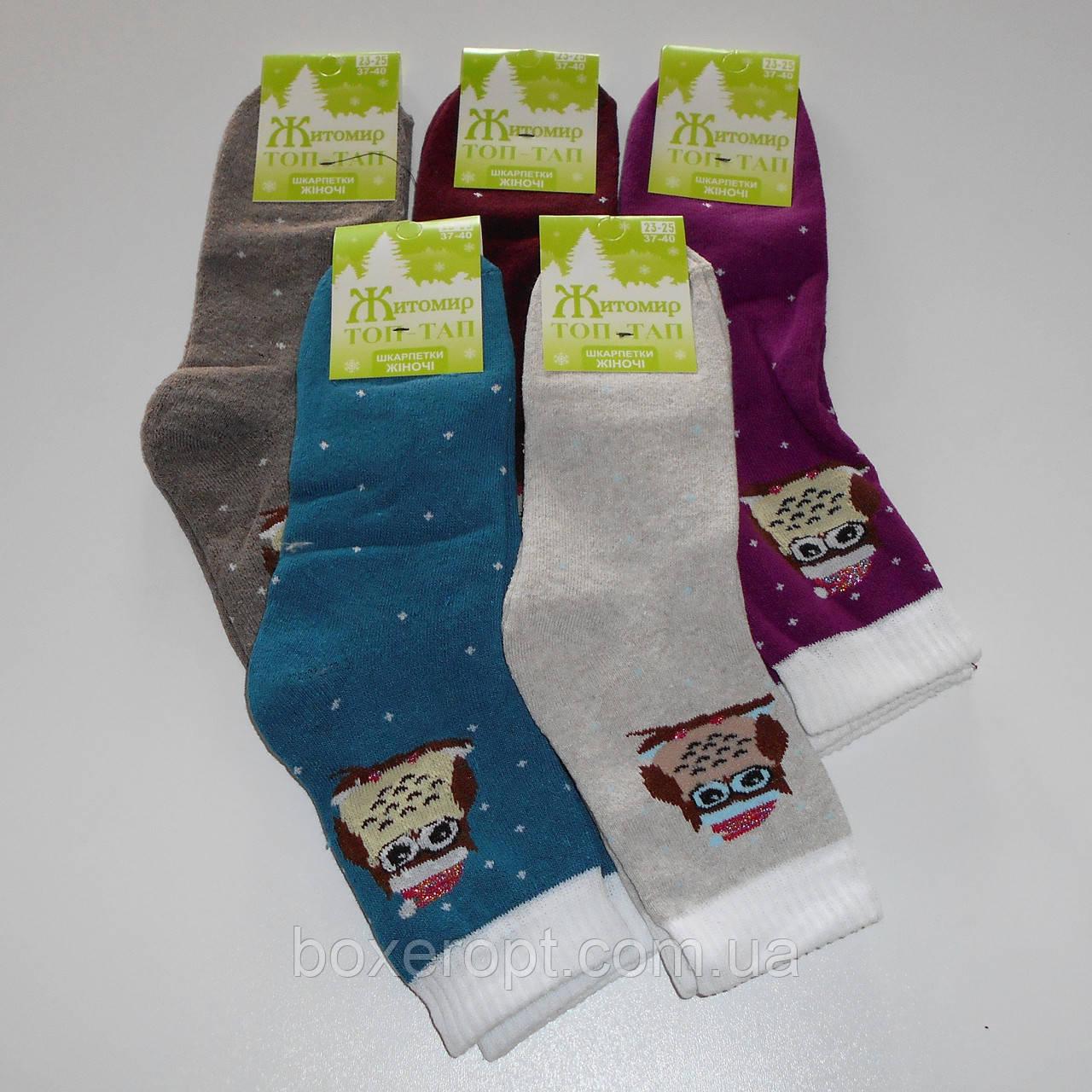 Женские махровые носки Топ-Тап - 11.50 грн./пара (сова)