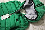 Дитяча демісезонна куртка., фото 2