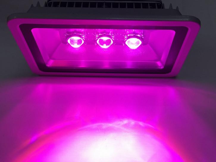 Светодиодный фитосветильник линзованный SL-150Lens 150W 3LED серый IP65 Код.59364