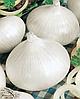 Семена лука Гирей 2500 семян Nasko