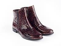 Ботинки Etor 5828-51046-19 40 коричневые, фото 1