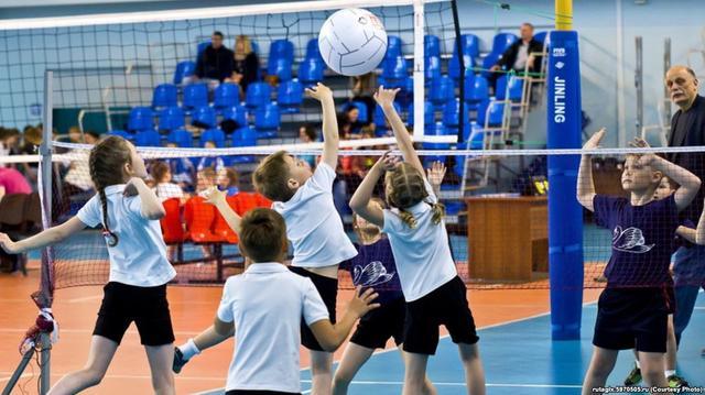Купить детскую волейбольную сетку от производителя