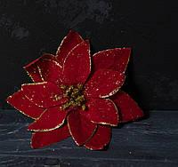 Головка пуансетии красной  золотистым ВЕЛЮР , фото 1