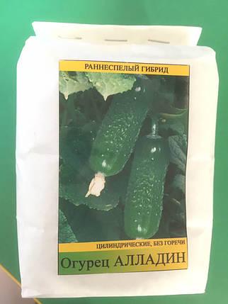 Семена огурца Аладдин F1 0,5 кг, фото 2