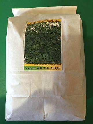 Семена укропа Аллигатор 1кг, фото 2