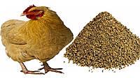 СК куры-несушки №1 вес. (15)