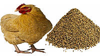 СК куры-несушки №1 вес. (35)