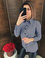 Рубашка ТМ K&ML в полоску