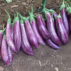 Семена баклажана Зебрино F1 (Zebrino F1) 500 сем.