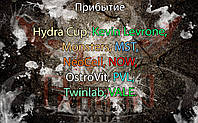Поступление: Hydra Cup, Kevin Levrone, Monsters, MST, NeoCell, NOW, OstroVit, PVL, Twinlab, VALE.