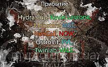 Поступление: Hydra Cup, Kevin Levrone, Monsters, MST, NeoCell, NOW, OstroVit, PVL, Twinlab, VALE.