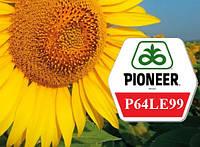 Семена подсолнечника Пионер П64ЛЕ99 (под Гранстар)