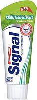 Зубная паста Signal Krauterfrische 100 мл, свежесть и здоровые десна
