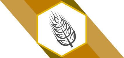 Семена зерновых