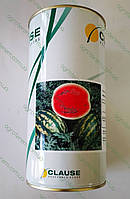 Семена арбуза  Кримсон Світ 0,5 кг (Клоз), фото 1