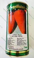 Морковь Шантане Ред Кор Chantenay Red Cored 500г  до 03. 2016г, фото 1