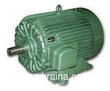 Електродвигун 22 кВт, 750 об/хв 4АМУ ПЕКЛО 5АМ 5АМХ 4АМН А 5А АЇР 200 L8, фото 5