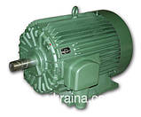 Електродвигун 11 кВт 3000 об/хв 6АМУ ПЕКЛО 5АМ 5АМХ 4АМН А 5А АЇР 132 M2, фото 5