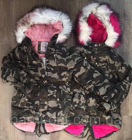 Куртки зимние для девочек оптом, S&D, 8-16 рр, фото 2