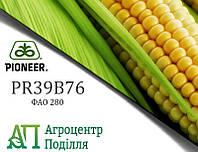 Семена кукурузы PR39B76 / ПР39Б76 (ФАО 280) Пионер