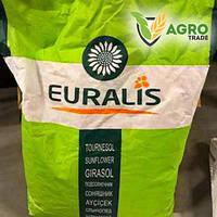 Семена подсолнечника, Евралис, ЕС  Вероника