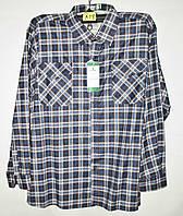 """Рубашка мужская байковая батальная в клетку, размеры 6XL-10XL Серии """"GIFT"""" купить оптом в Одессе на 7 км"""