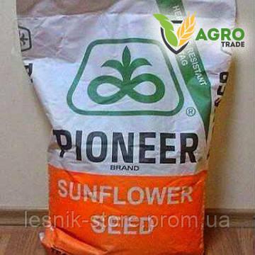 Семена подсолнечника, Pioneer, P64HH106