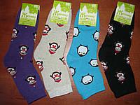 Махровые женские носки Топ-тап. Р. 23- 25. Житомир. Пингвины., фото 1