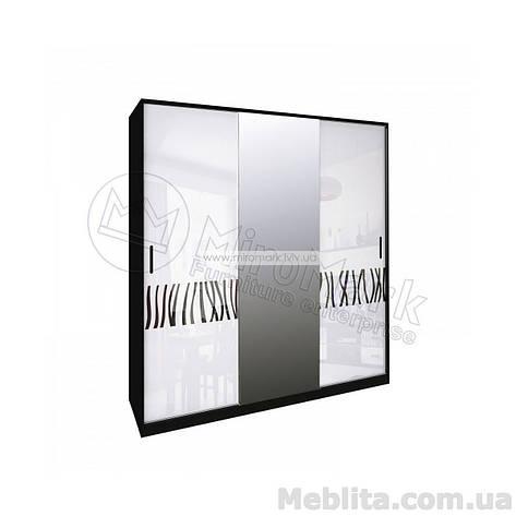 Терра шкаф 3дв глянец белый-черный мат, фото 2