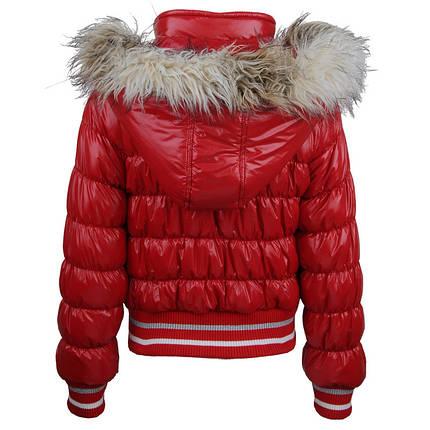 Куртка для девочки GLO-Story 6481, фото 2