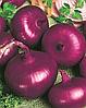 Семена лука Тимур 500 грамм Nasko
